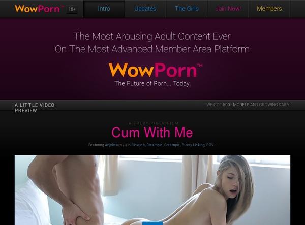 Wowporn Account Login