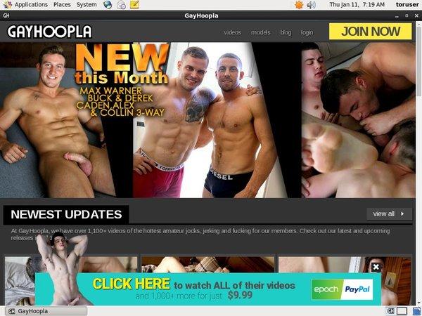 Gayhoopla Site Rip 2018